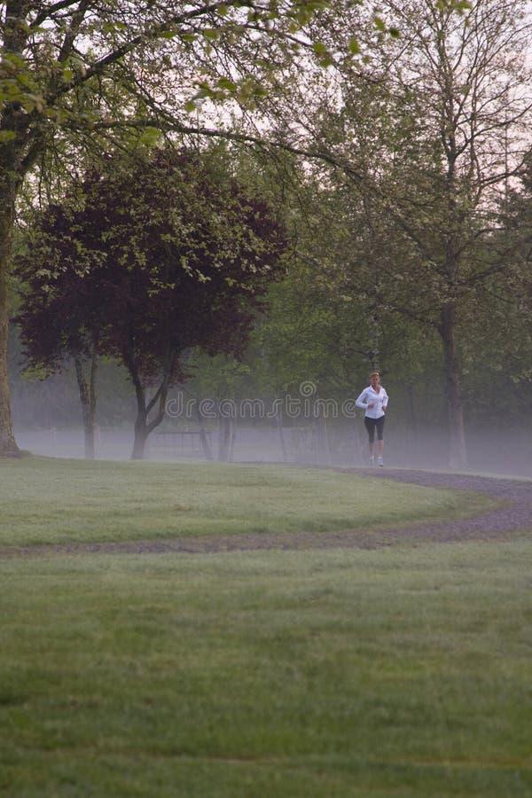有薄雾的早晨运行 库存照片