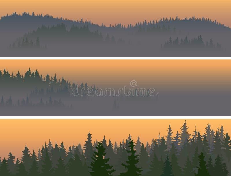 有薄雾的松柏科木材水平的横幅。 向量例证