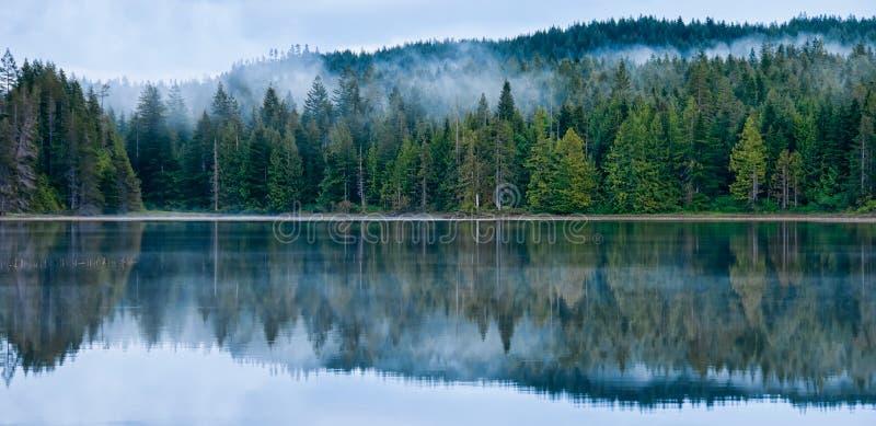 有薄雾的森林的理想的反映在湖 免版税库存照片