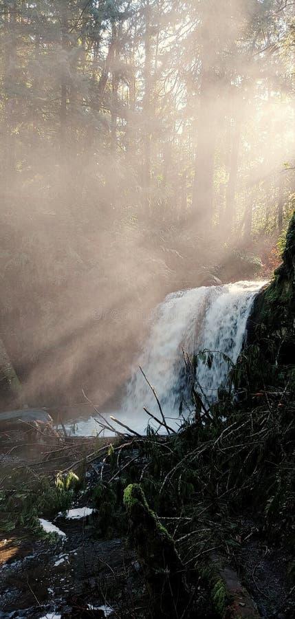 有薄雾的水秋天 库存照片