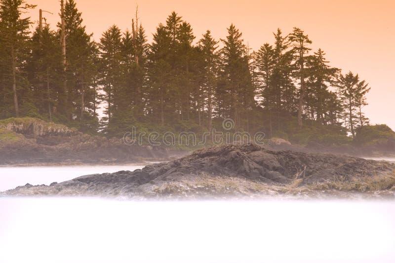 有薄雾的海运 免版税库存图片