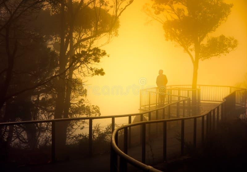 有薄雾的监视 库存图片