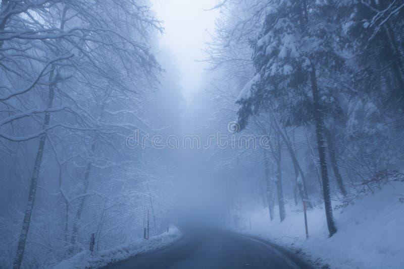 有薄雾的路冬天 免版税图库摄影