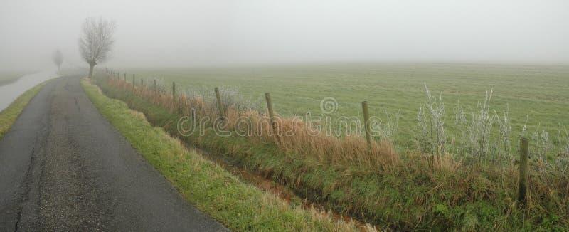 有薄雾的路 库存图片