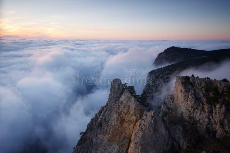 有薄雾的雾山看法-晃动与杉树 免版税库存图片