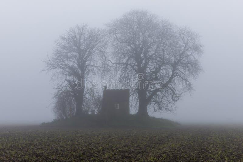 有薄雾的领域的多德雷赫特一点议院 免版税库存图片