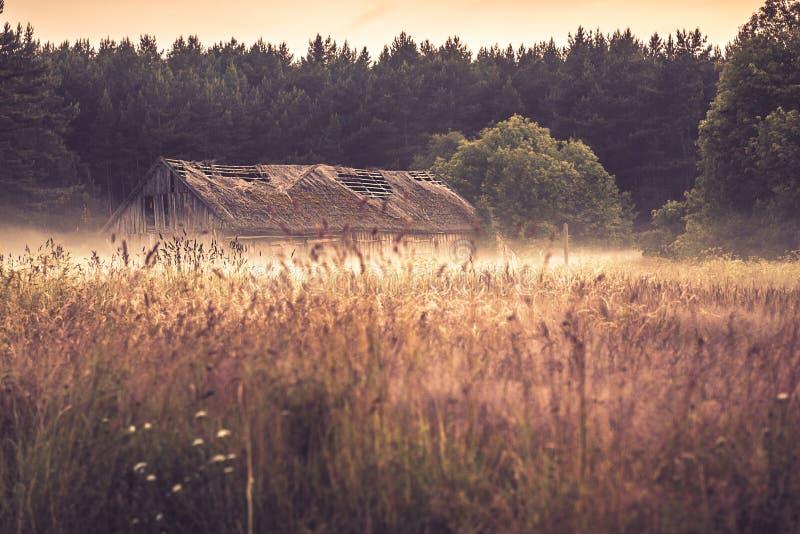 有薄雾的领域的老谷仓 免版税库存照片