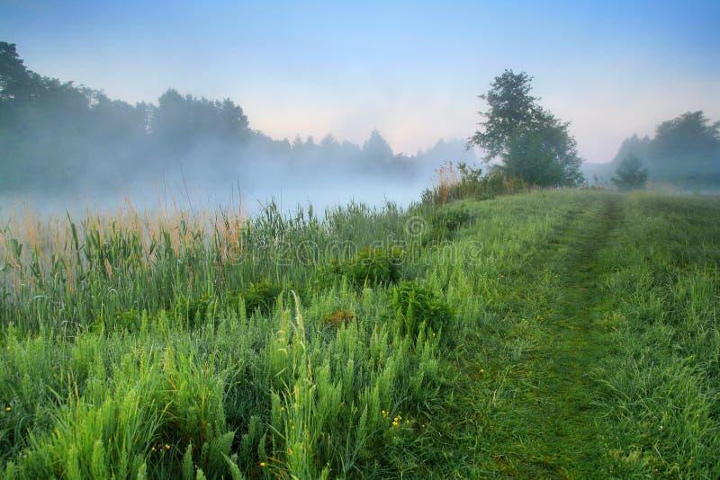 有薄雾黎明的湖 免版税图库摄影