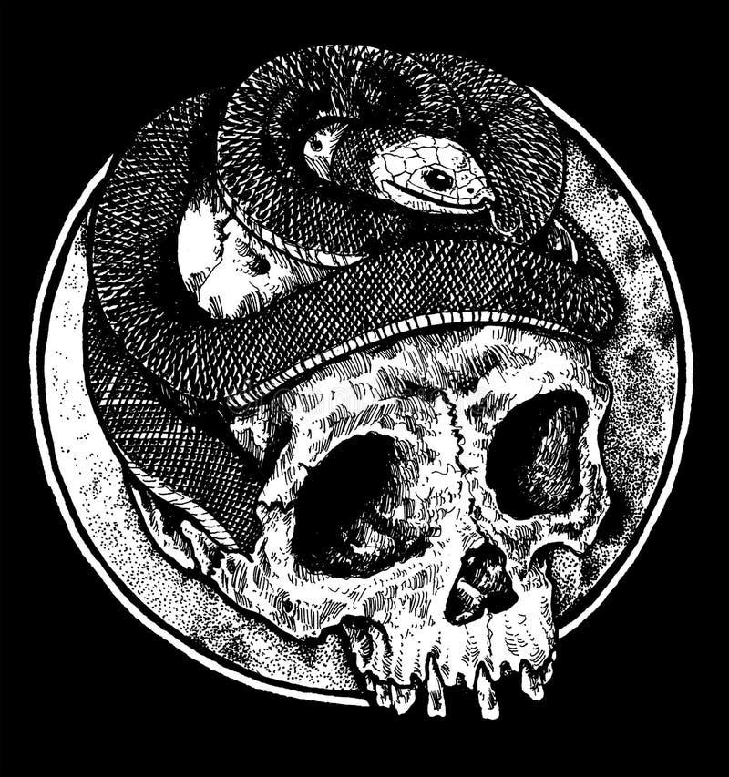 有蛇设计的黑暗的头骨 库存照片
