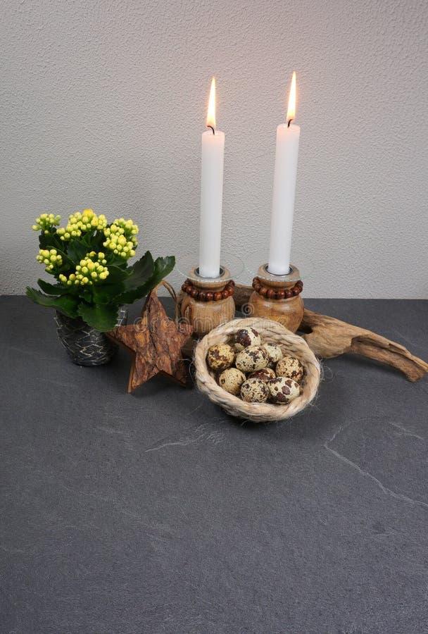 有蜡烛和田凫和石鸡蛋的Kalanchoe calandiva blossfeldiana室内植物在与一木星和driftwoo的一个篮子 库存照片