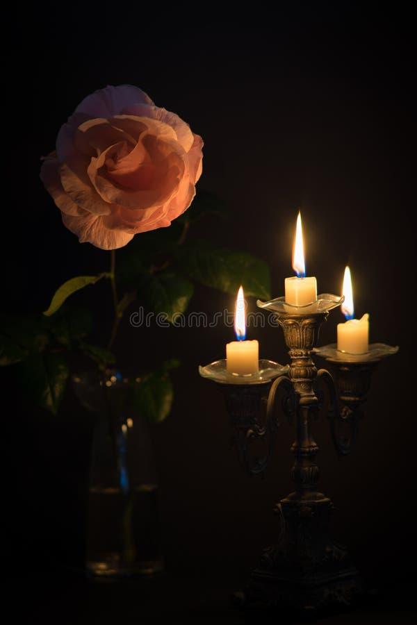 有蜡烛的罗斯在黑暗 免版税图库摄影