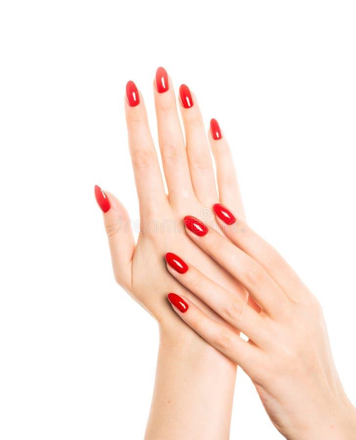 有被修剪的红色钉子的妇女手 图库摄影