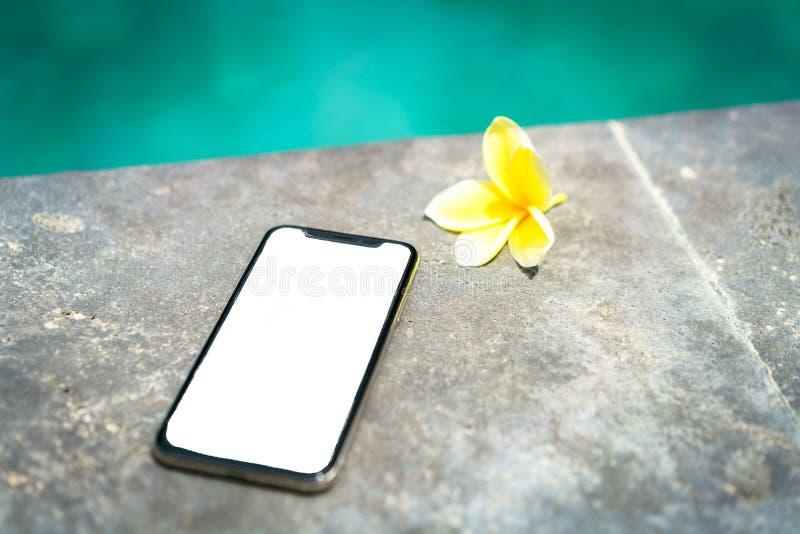 有被隔绝的屏幕的接触电话x在水池和热带花的背景 免版税库存图片