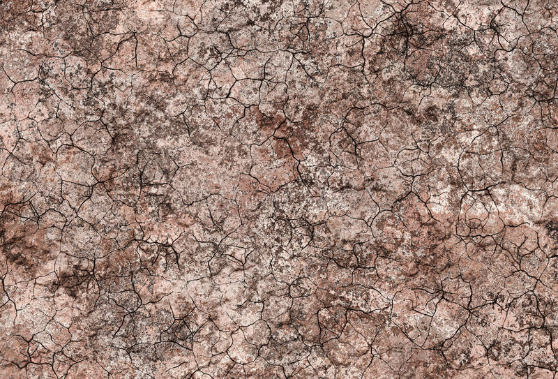 有裂痕的土壤背景 向量例证