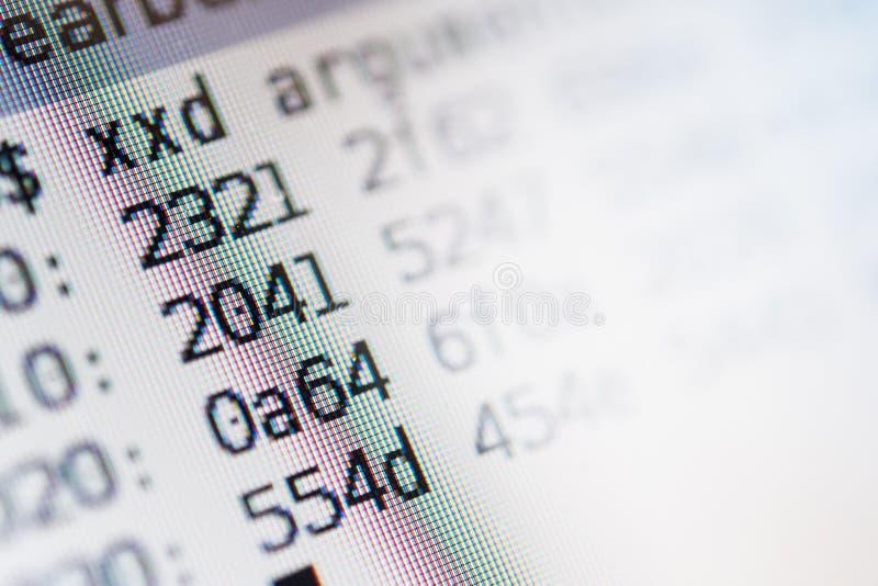 有计算机编码的屏幕 免版税图库摄影