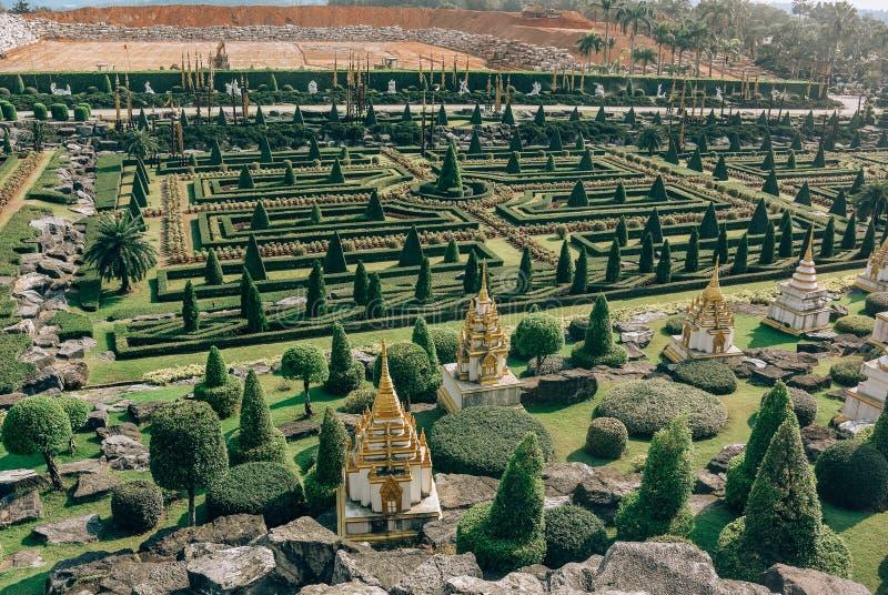有计算的树的公园在芭达亚市附近的Nong Nooch热带植物园里在泰国 免版税库存图片