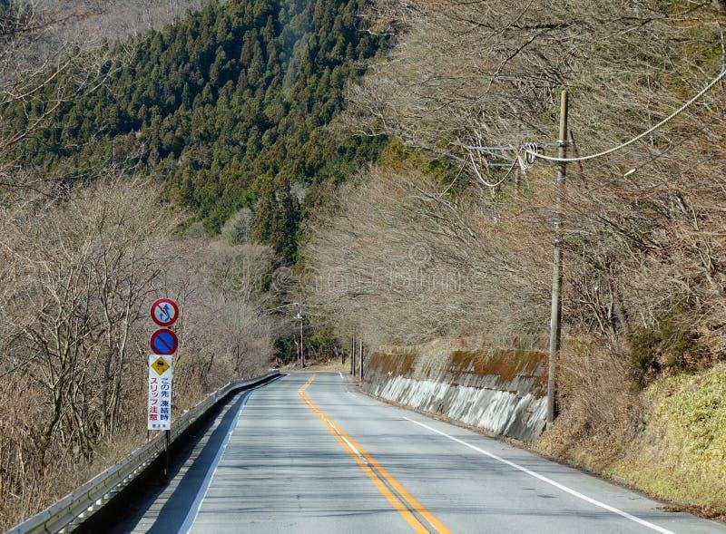 有许多的山路树在冬天在日光,日本 库存照片