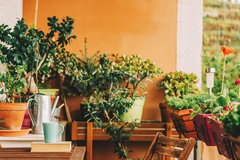有许多盆的植物的舒适夏天阳台 免版税库存图片
