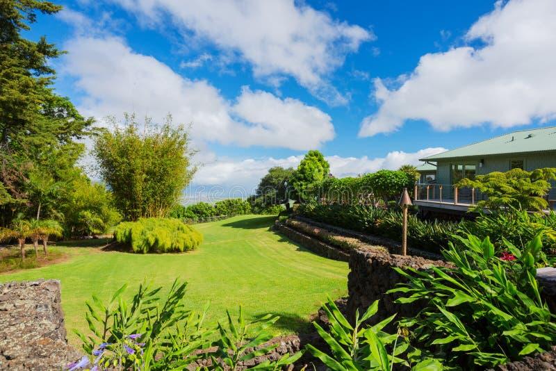 有象草的草坪的家 免版税库存图片