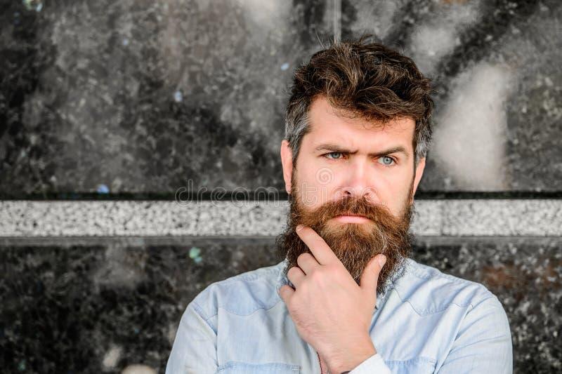 有豪华的头发的有胡子的人 与完善的样式的周道的残酷男性 室外有胡子的人 胡子关心和理发店 免版税库存照片