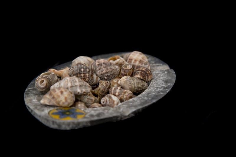 有贝壳的装饰金属盘子 库存图片