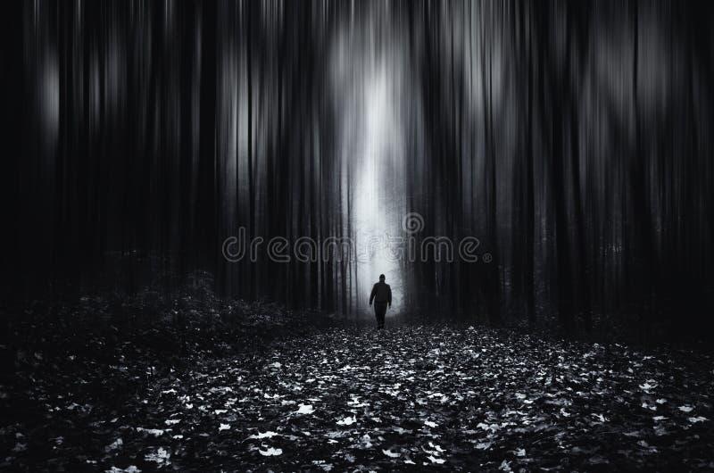 有走在其他边的人的超现实的无限森林 库存照片