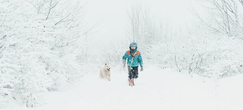 有走在冬天的狗的男孩 图库摄影