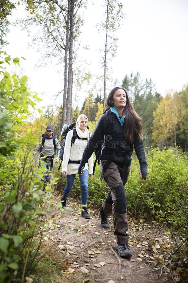 有走在森林足迹的朋友的女性远足者 免版税库存照片