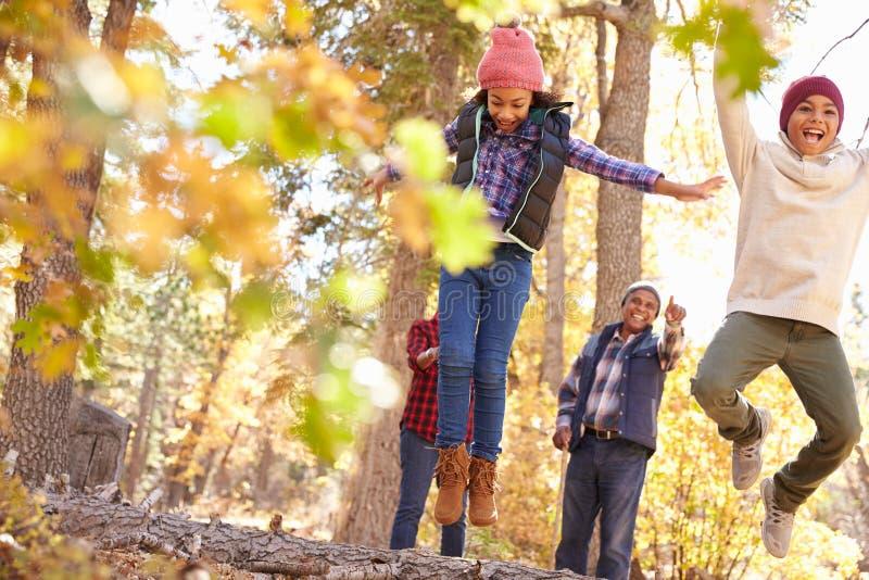 有走通过秋天森林地的孩子的祖父母 免版税图库摄影