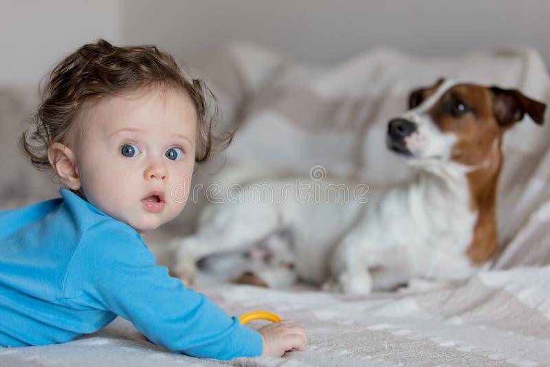 有起重器罗素狗的小男婴 免版税库存图片