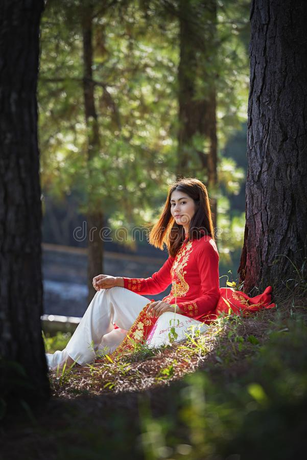 有越南文化传统礼服的美女 免版税图库摄影