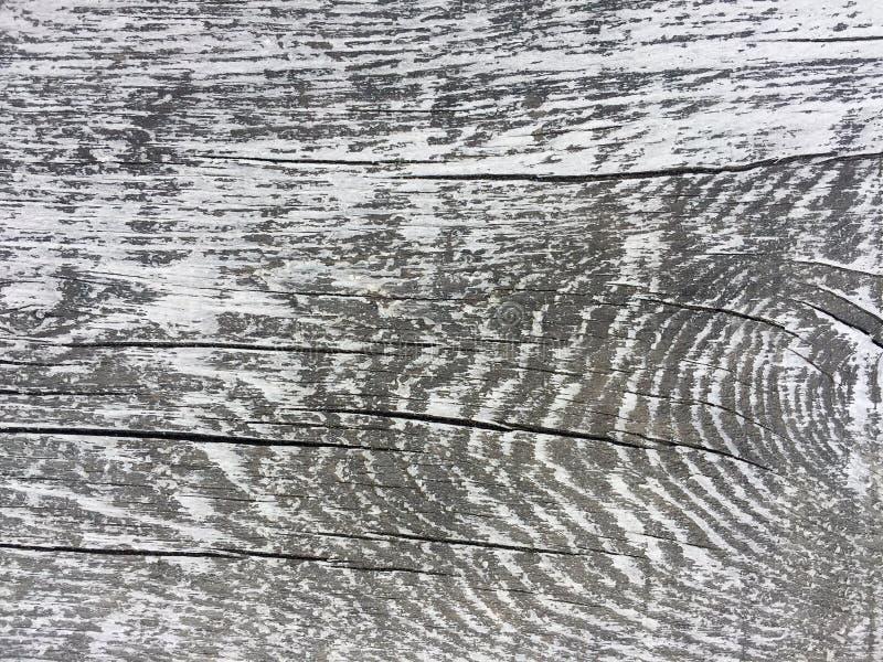 有趣的背景的灰色和白色老年迈的板条 对网、印刷品、博克和创造性的想法 库存照片