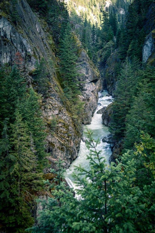 有跑通过它的河的加拿大峡谷 免版税库存图片