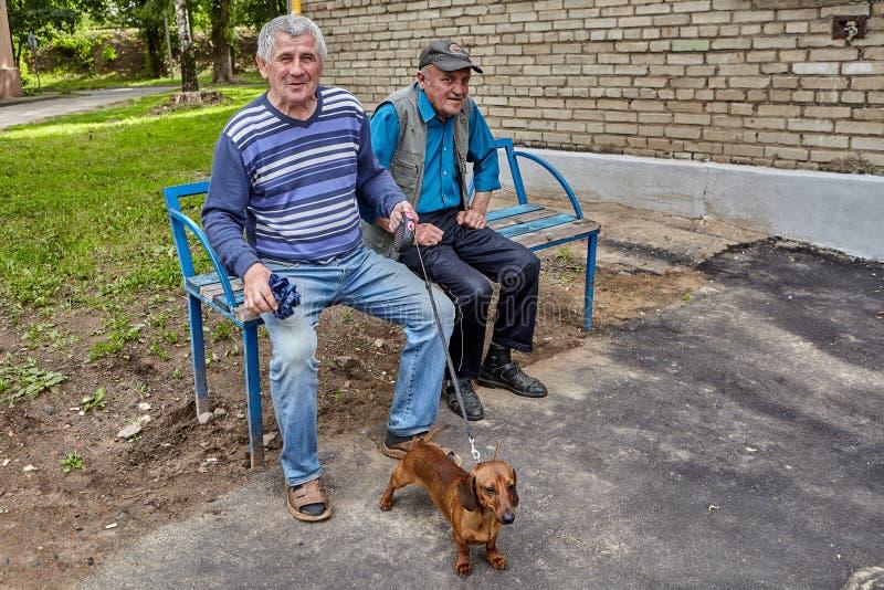 有达克斯猎犬的,维帖布斯克,白俄罗斯成熟人 免版税库存图片