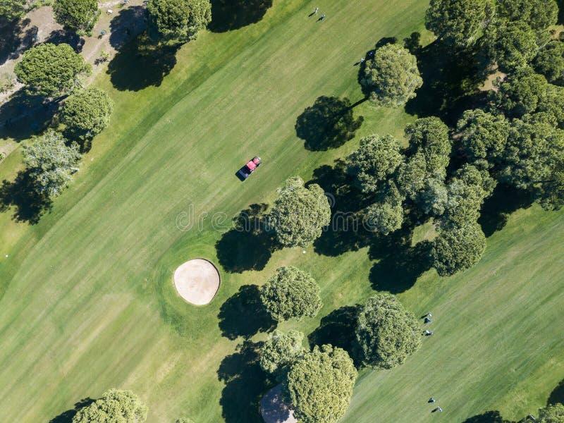 有运转在高尔夫球场的贷款刈草机的一台拖拉机 免版税库存照片