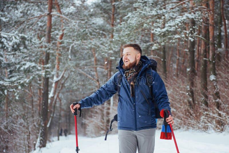 有远足旅行生活方式冒险概念活跃假期的背包的人旅客室外 美好的森林横向 库存照片