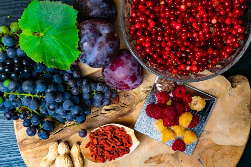 有逆转醇的食物富有,葡萄,李子, goji,花生,蔓越桔, raspberrys,巧克力, 免版税库存照片