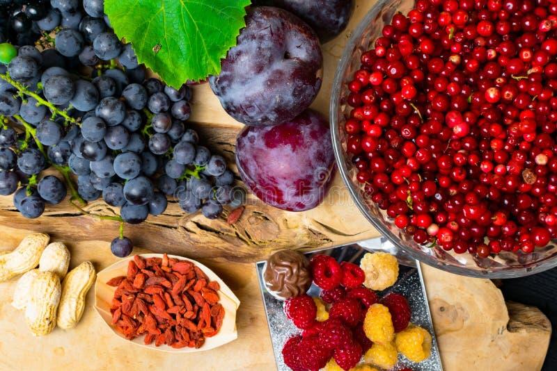 有逆转醇的食物富有,葡萄,李子, goji,花生,蔓越桔, raspberrys,巧克力, 免版税库存图片