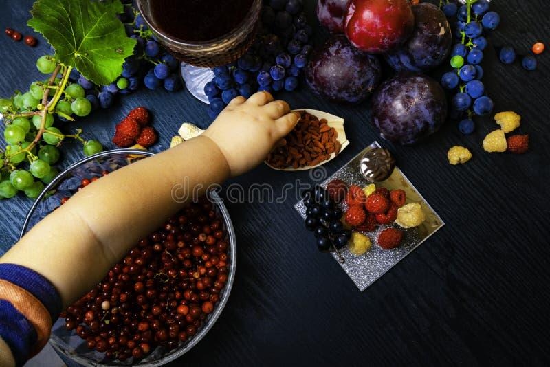 有逆转醇的食物富有,葡萄,李子, goji,花生,蔓越桔, raspberrys,黑暗的巧克力,石榴汁 免版税库存图片