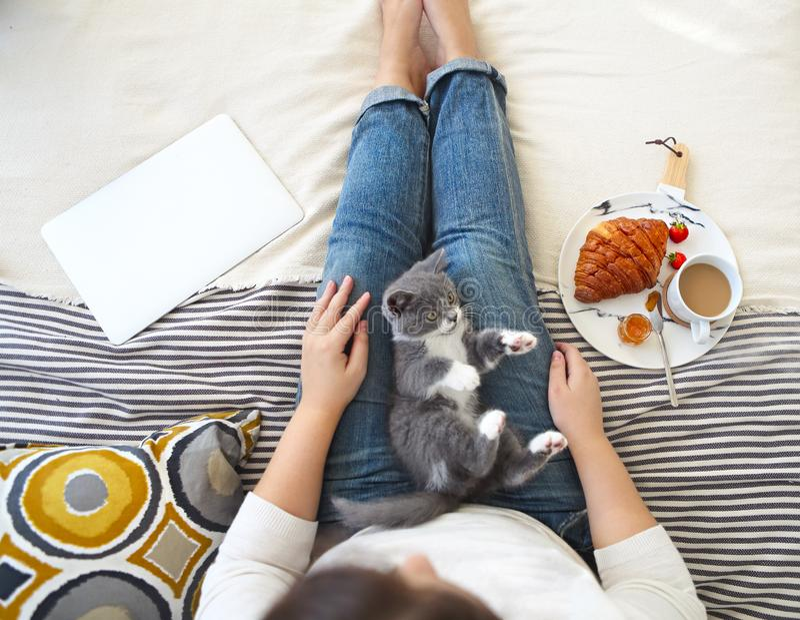 有逗人喜爱的小的小猫的年轻女人在家坐食用早餐和使用膝上型计算机的床 免版税图库摄影