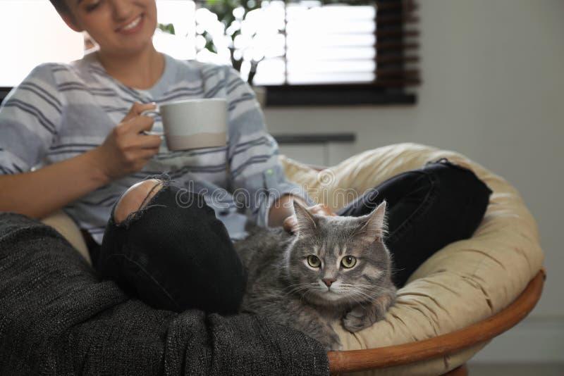 有逗人喜爱的猫的年轻女人在扶手椅子在家 库存照片