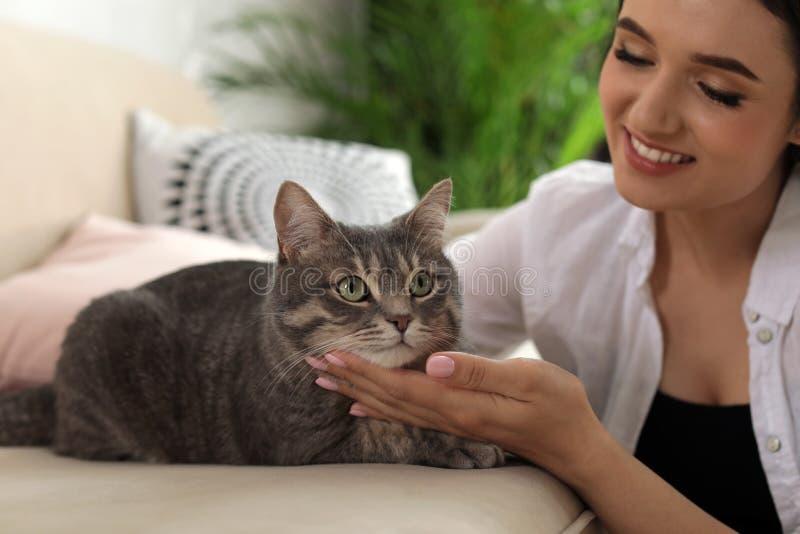 有逗人喜爱的猫的年轻女人 宠物和所有者 库存图片