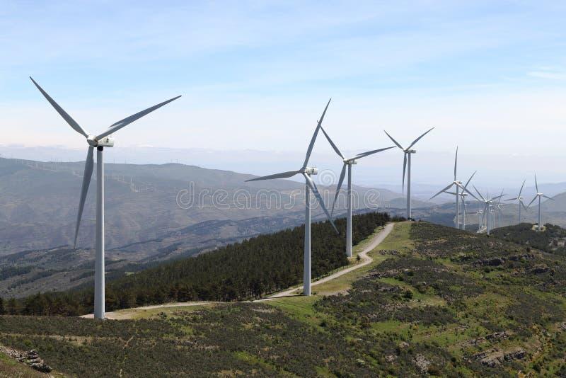 有造风机的风轮机公园 免版税库存图片