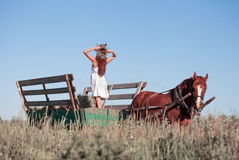 有野花的俏丽的女孩在马支架在夏日 免版税库存照片