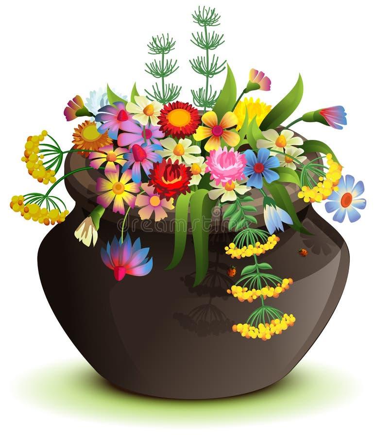 有野花的黑万圣节罐 在白色隔绝的动画片例证 库存照片