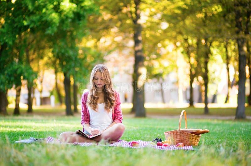 有野餐和写在日志的女孩 库存照片