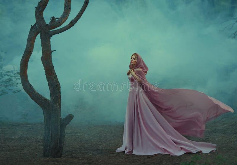 有金发的华美的年轻矮子公主,穿戴在一件昂贵的豪华长的柔和的桃红色礼服,拿着光 图库摄影