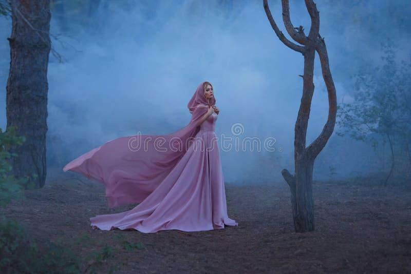 有金发的美妙的中医师美女,穿戴在一件昂贵的豪华长的软的桃红色礼服,对负  免版税库存图片