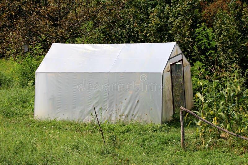 有金属门的后院塑料温室盖用白色尼龙和围拢与高未割减的绿草和高大的树木 库存图片