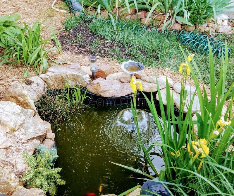 有金鱼和喷泉的小池塘 免版税库存图片